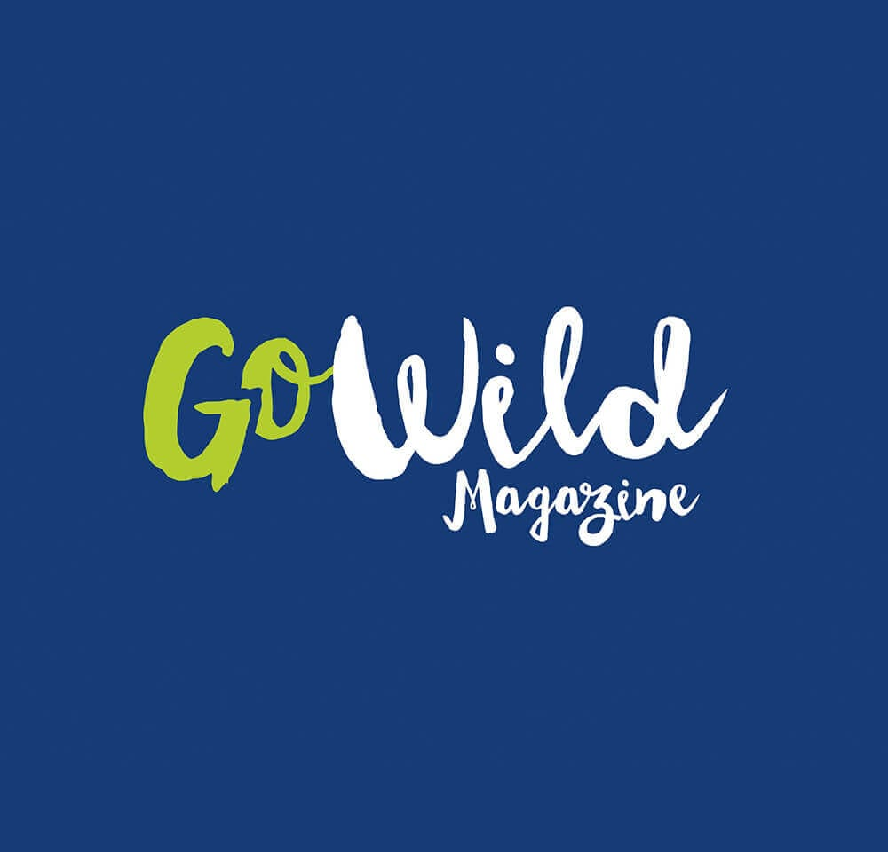 Project Spark Gowild brainstorm design | branding, graphic & website design limerick